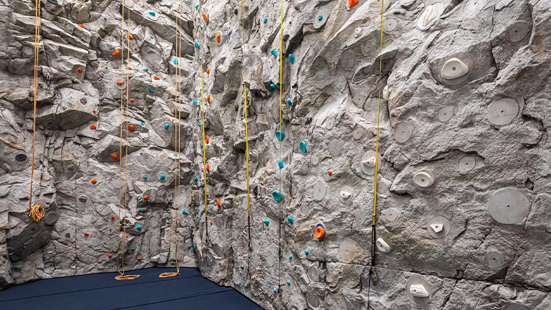 the waterline club indoor rock climbing wall